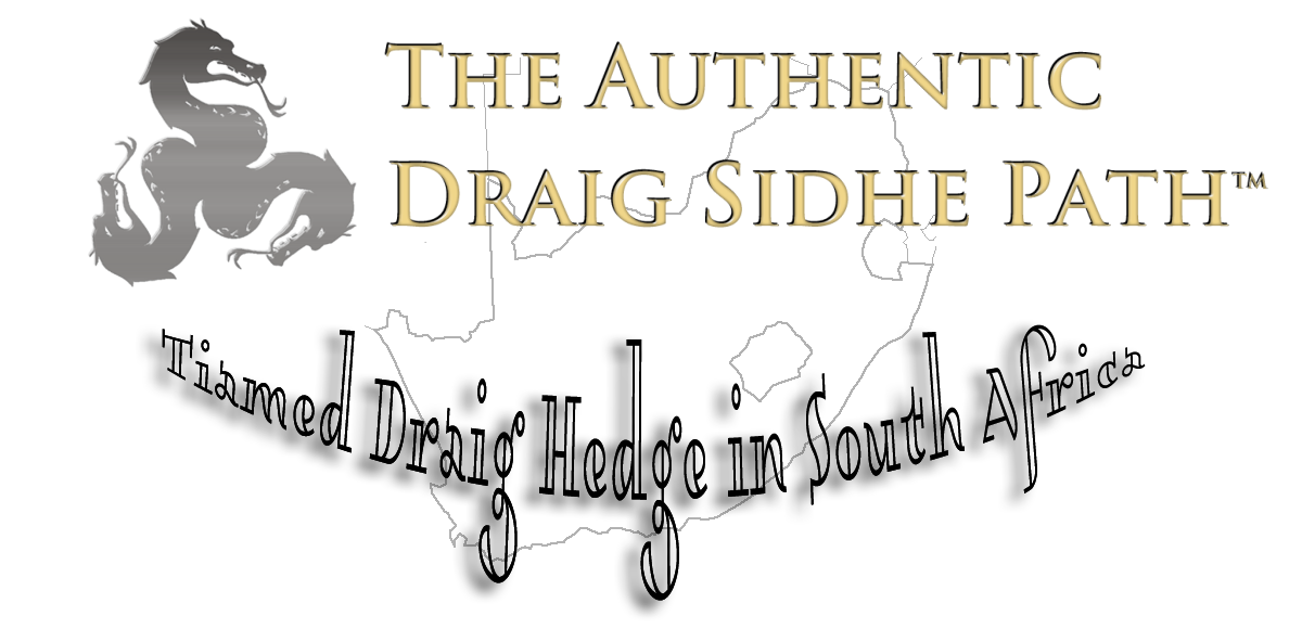 Tiamed Draig Hedge